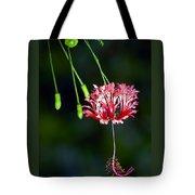 Hanging Coral Hibiscus Tote Bag