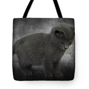 Hannah's Kitten Tote Bag