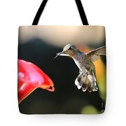 Happy Hummingbird Tote Bag