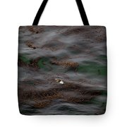 Harbor Seal In Kelp Bed Tote Bag