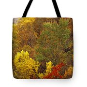 Hardwood Forest With Maple And Oak Tote Bag