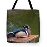 Harlequin Duck Tote Bag