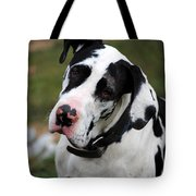 Harlequin Great Dane Tote Bag