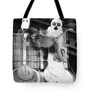 Harlows Monkey Experiment Tote Bag