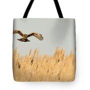 Harrier O'er Amber Waves Tote Bag