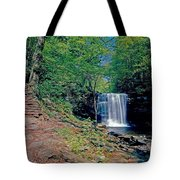 Harrison Wright Falls - Summertime Tote Bag
