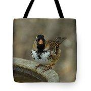 Harris's Sparrow Tote Bag