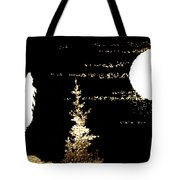 Harvest Moon And Coyote 2 Tote Bag
