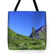 Hatcher Pass Alaska Tote Bag