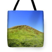 Hatcher Pass Tote Bag