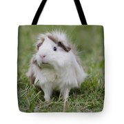Have You Seen My Hairspray? Tote Bag