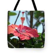 Hawaiian Hibiscus Tote Bag