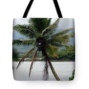 Hawaiian Palm Tote Bag