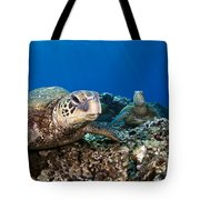 Hawaiian Turtle On Pacific Reef Tote Bag by Dave Fleetham