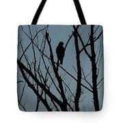 Hawk 4 Tote Bag