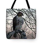 Hawk 6 Tote Bag