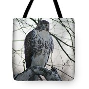 Hawk 9 Tote Bag