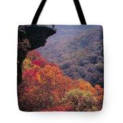 Hawks Beak Tote Bag