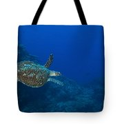 Hawksbill Sea Turtle, Kimbe Bay, Papua Tote Bag