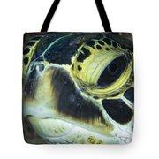 Hawksbill Sea Turtle Portrait Tote Bag