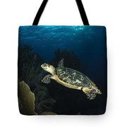 Hawksbill Sea Turtle Swimming Tote Bag