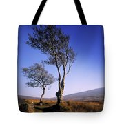 Hawthorn Trees In Sally Gap, County Tote Bag