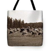 Hay Maker Tote Bag