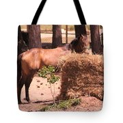 Hay's For Horses Tote Bag
