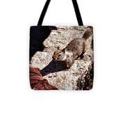 hd 375 hdr - Feed Me 1 Tote Bag