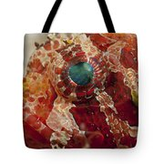 Head Detail Of A Red Dwarf Lionfish Tote Bag