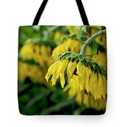 Head Of Sunflowers Tote Bag