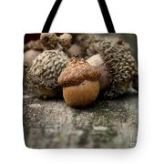 Head Of The Class Tote Bag