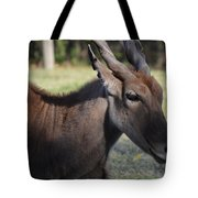 Headshot Eland Tote Bag