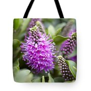 Hebe Dona Diana Flowers Tote Bag