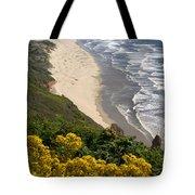 Heceta Beach View Tote Bag