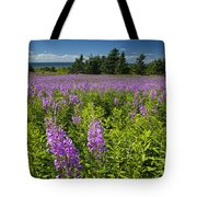 Hedge Woundwort Flower Blossoms And Field Tote Bag