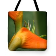 Heliconia Latispatha Tote Bag