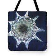 Heliodiscus Sp. Radiolarian Lm Tote Bag