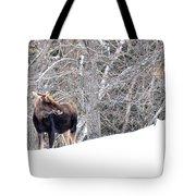 Hello Moose Tote Bag