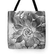Hen And Chicks Digital Art Tote Bag