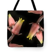 Hen And Chicks Tote Bag