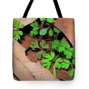 Here Comes Spring Tote Bag