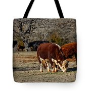 Hereford Cattle Tote Bag