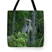 Heron On A Limb Tote Bag