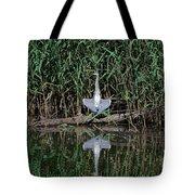 Heron Sunbath Tote Bag