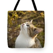Hey Things Are Looking Up  Tote Bag