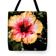 Hibiscus Flower Tote Bag by Lisa Phillips