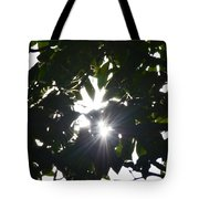 Hickory Triple Stars Tote Bag