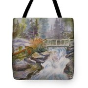 Hidden Falls Tetons Tote Bag