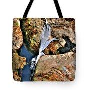 Hidden Images Vert Tote Bag